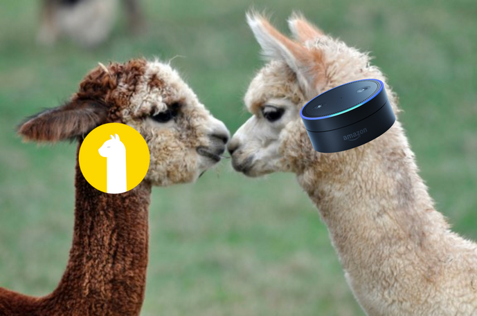 More Features with Amazon Alexa and Alpaca
