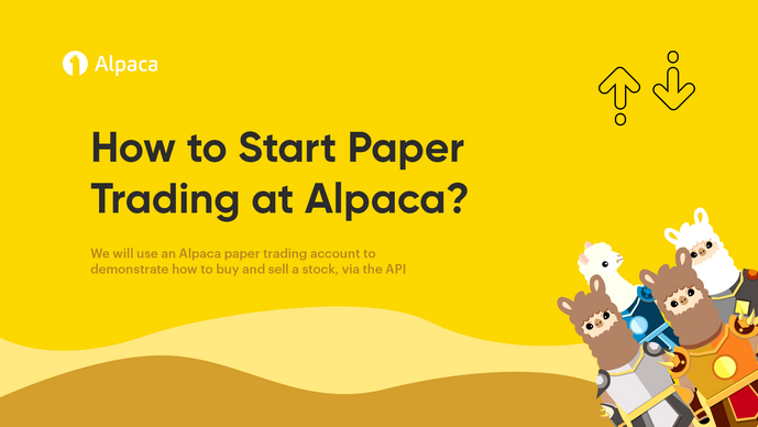 How to Start Paper Trading at Alpaca?